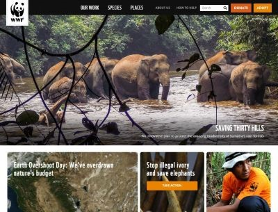 World_Wildlife_Foundation.jpg